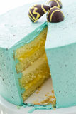 Robins egg cake Royalty Free Stock Images
