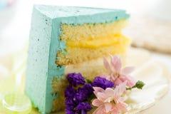 Robins egg cake Stock Photos