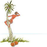Robinson Crusoe. Man climbing a palm tree and watching the sea – Robinson Crusoe, summer vacation theme. Vector illustration with place for text Royalty Free Stock Images