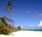 Robinson Feeling. Impressions from Crane Beach / Barbados Royalty Free Stock Images
