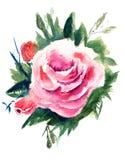 Roblommor, vattenfärgmålning Royaltyfri Fotografi