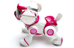 Robodog Stock Photo