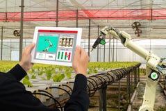 Robot astuto 4 di industria di Iot 0 concetti di agricoltura, agronomo industriale, agricoltore che usando tecnologia di intellig Immagine Stock Libera da Diritti