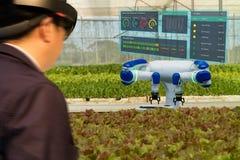 Robot astuto 4 di industria di Iot 0 concetti dell'agricoltura, agronomo, farmerblurred facendo uso dei vetri astuti hanno aument immagini stock libere da diritti