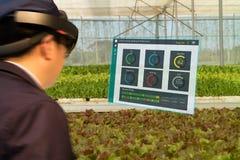 Robot astuto 4 di industria di Iot 0 concetti dell'agricoltura, agronomo, farmerblurred facendo uso dei vetri astuti hanno aument Fotografie Stock Libere da Diritti