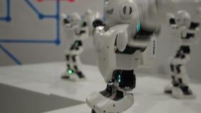 Robot bianchi divertenti di dancing stock footage
