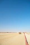 Robot camel racing Stock Image