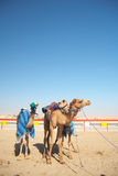 Robot camel racing Royalty Free Stock Image