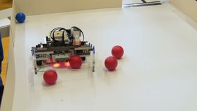 Robot collecting balls. stock video