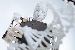 Robot complesso bianco che studia il genoma Immagine Stock