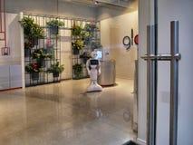 Robot de la pimienta dentro de una tienda para dar ayuda a los clientes fotos de archivo libres de regalías