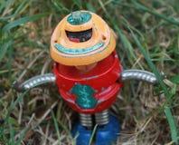 Robot en la hierba Foto de archivo libre de regalías