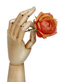 Robot hand holding rose Stock Images