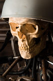 Robot with human skull Stock Images