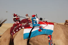 Robot jockeys on racing camels Stock Images