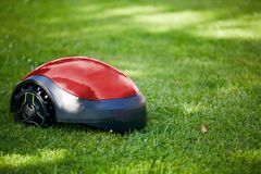 Robot lawn mower on summer meadow in the garden Stock Photography