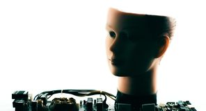 Robot learning cyber security. Artificial intelligence machine learning concept, robot head royalty free stock photos