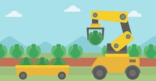 Robot que cosecha la col en el campo agrícola libre illustration