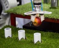 Robot que levanta una manzana Fotografía de archivo