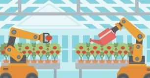 Robot que trabaja en un invernadero libre illustration