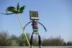Robot robić części obwód deski na zielonej trawie Android w ogrodowym życzliwym pojęciu obrazy royalty free