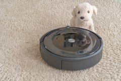Robot stofzuiger met een hond op een schoon beige tapijt Het concept netheid en comfort thuis stock foto