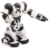 Robot Toy. Black and White robot full size masked royalty free stock image