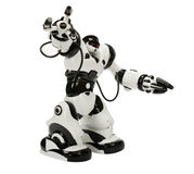 Robot Toy. Black and White robot Can dance and sing Royalty Free Stock Image