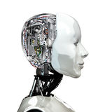 A robot woman head with internal technology Stock Photo