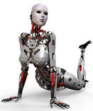 Robot woman pinup Stock Image
