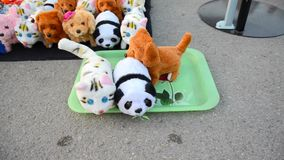 Robotic animal dolls on ground market of Thailand stock video footage