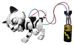 Robotic Kitten, Battery Charge Royalty Free Stock Photos