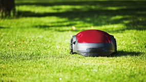 Robotic lawn mower on summer meadow in the garden Royalty Free Stock Image