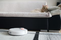 Robotic vacuum cleaner cleaning the room. Royalty Free Stock Photos