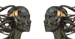 Robots frais de cyborg Photos stock