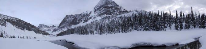 Robson rzeki panorama Obrazy Royalty Free