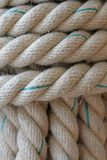 Robust large rope and hemp for rope ladder Royalty Free Stock Images