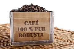 Robusta coffee Royalty Free Stock Image