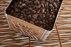 Robusta coffee Stock Image