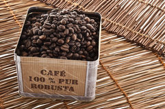 Robusta coffee Royalty Free Stock Photography