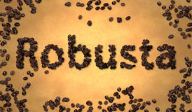 Robusta Coffee Bean on Old Paper Royalty Free Stock Photos