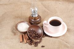 Robusta Coffee Beans Stock Photo