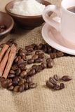 Robusta Coffee Beans Stock Images