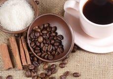 Robusta Coffee Beans Stock Image