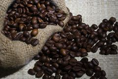 Robusta Coffee Beans Stock Photo