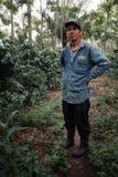 robusta koffieaanplanting met zijn trotse eigenaar stock fotografie