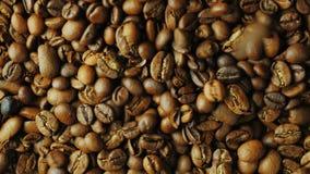 Robusta korn faller ner på kornArabicakaffet Blandande olika variationer för bättre smak stock video