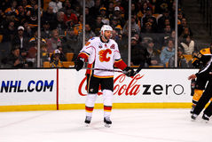 Robyn Regehr Calgary Flames Stock Image