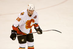 Robyn Regehr Royalty Free Stock Images