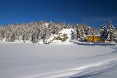 Rocío bajo nieve Fotos de archivo libres de regalías